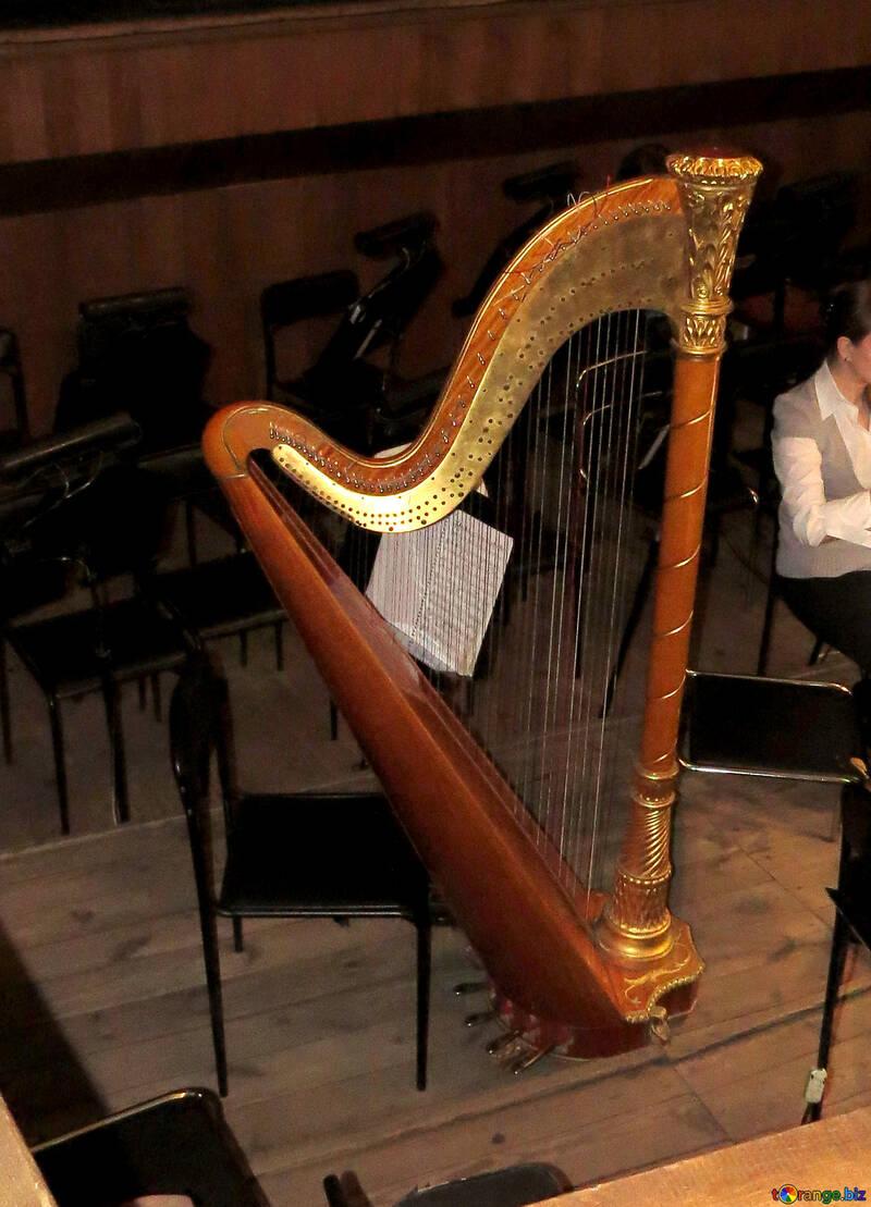 Big Harp №21643