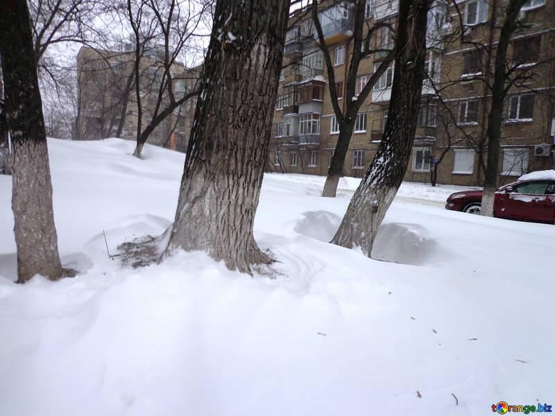 Consequences snowfall №21588