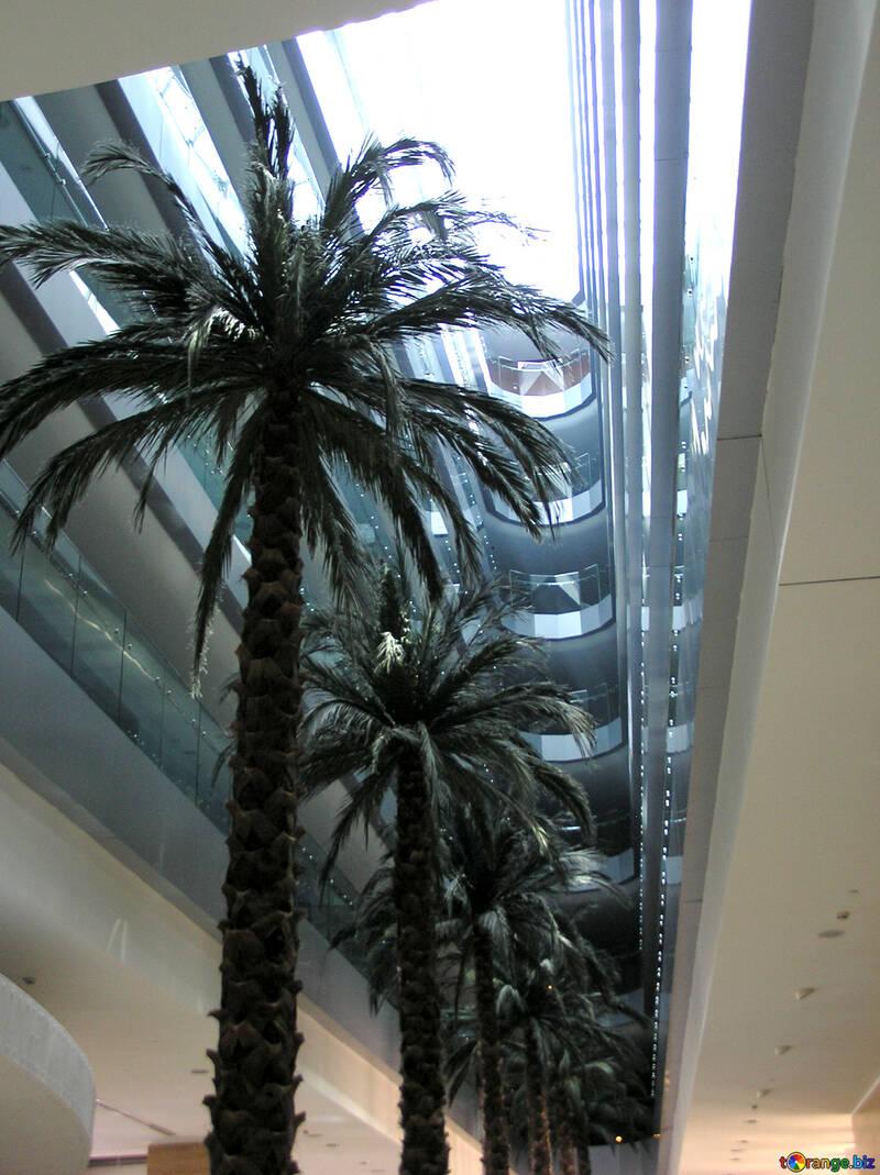 Palms Hotel №21043