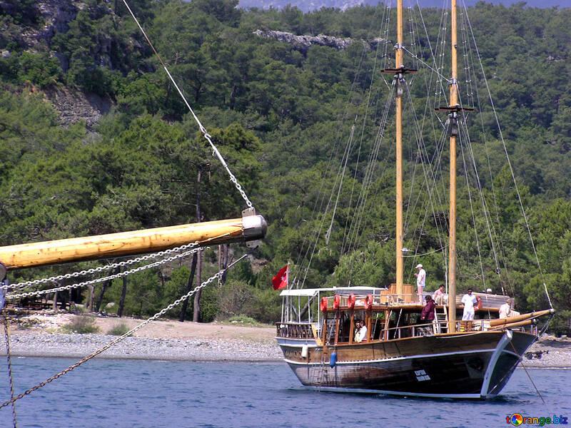 Barche vicino alla spiaggia №21933