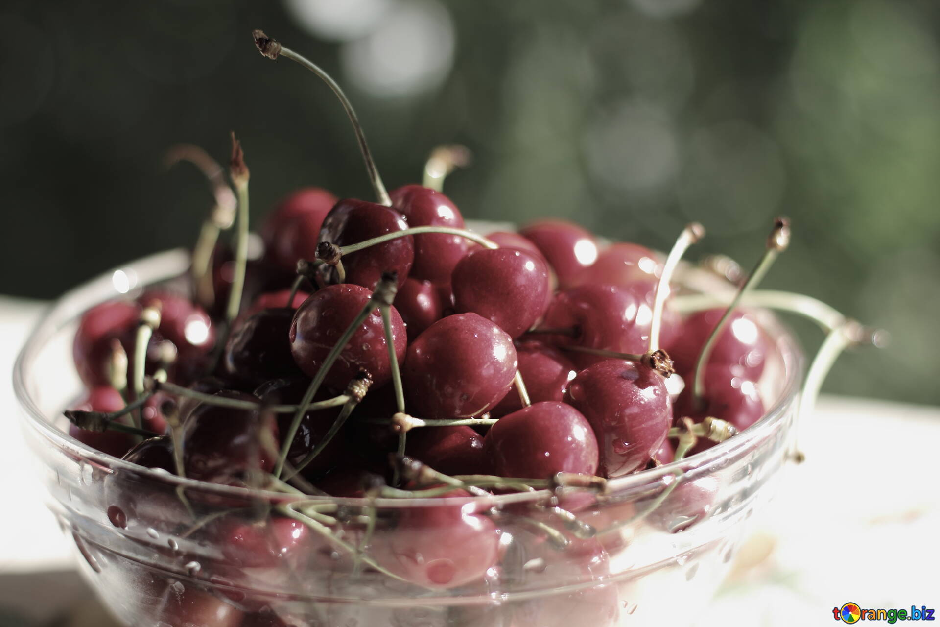 Download Free Image Black Cherry In HD Wallpaper Size 1920px