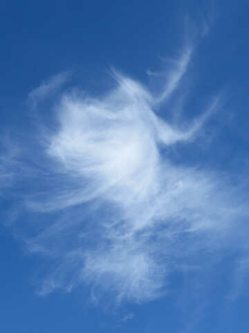 Miracle cloud №22745