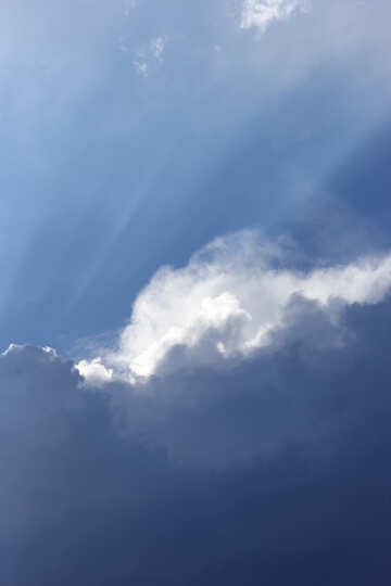 Rays from the clouds №22671