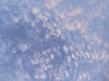 Cielo di velluto №22643