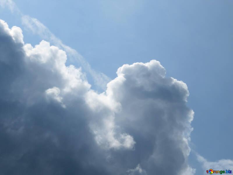 Cumulus №22561