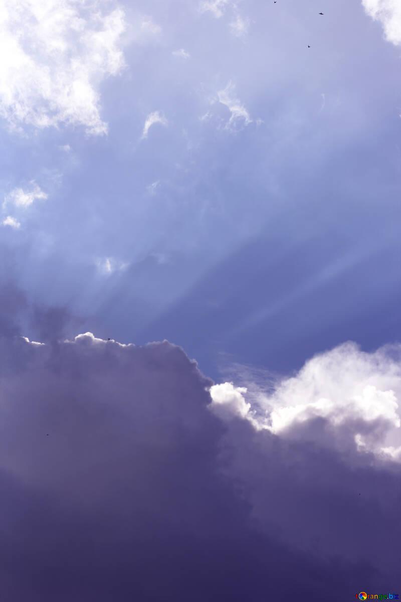 Heavenly Beauty №22677