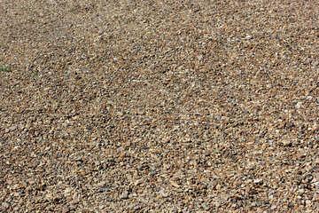 Texture coarse sand №23647
