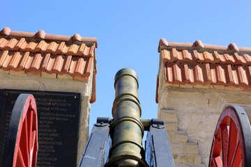 Bronze Cannon №23695