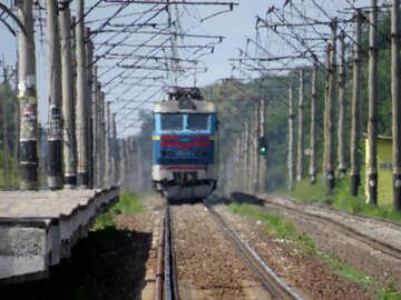 Summer Train №23029