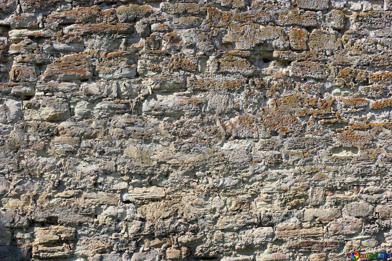 Un vecchio muro di pietra №23682