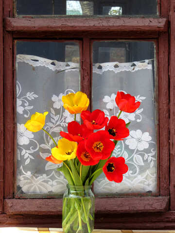 Bouquet of tulips on the window №24157