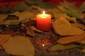 Autumn Candle №24251