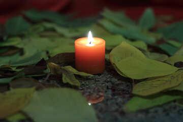 Kerze in den Blättern №24253