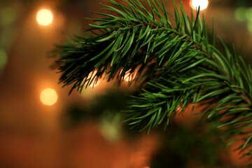 Christmas tree №24595