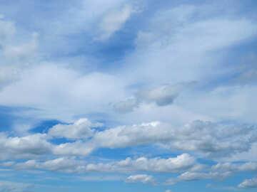 Cavalli bianchi di nuvole №24222