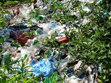 Garbage dump №24694
