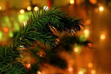 Christmas tree №24596