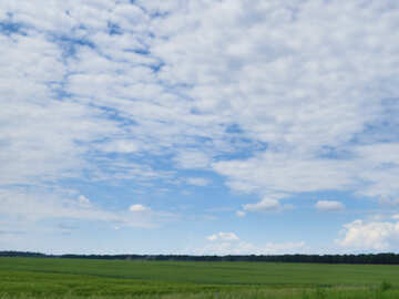 Sky over the field №24718