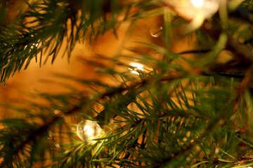 Lampadina sull`albero di Natale №24563