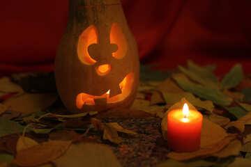 Halloween pumpkin picture №24248