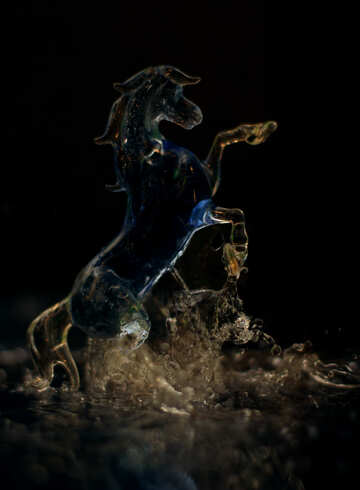 Horse and water splashes