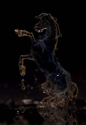 Ghost horse №24513