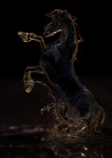 Transparent horse №24515