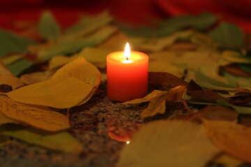 Kerze und Herbstlaub №24252