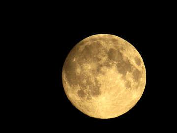 Moon №24176