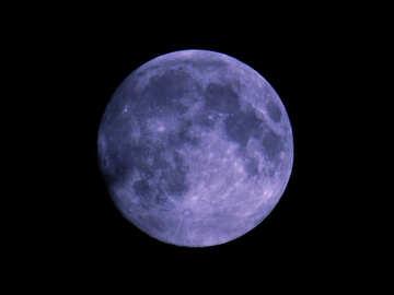 Blue moon №24178