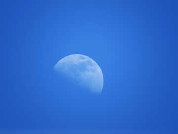 Blue Moon №24536