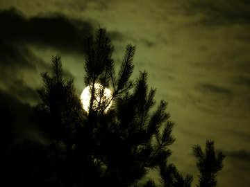 Scary moon №24182
