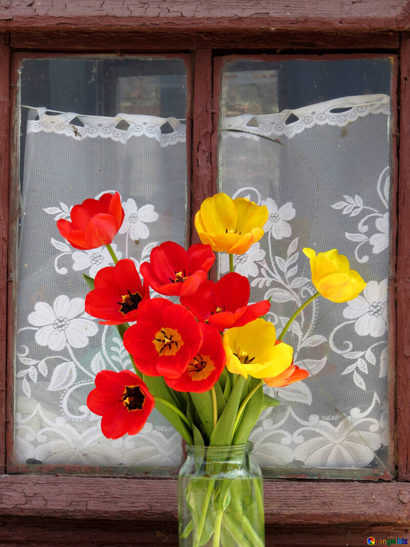 Still life of bouquet of tulips №24152