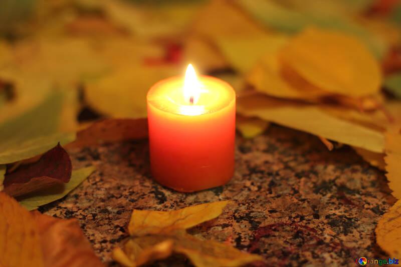 Herbstlaub №24259