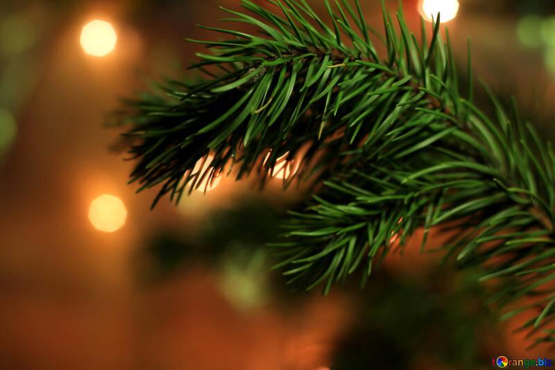Árbol de Navidad №24595