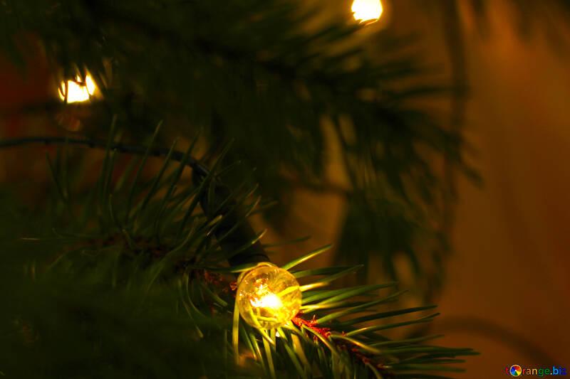 Christmas garland on Christmas tree №24562