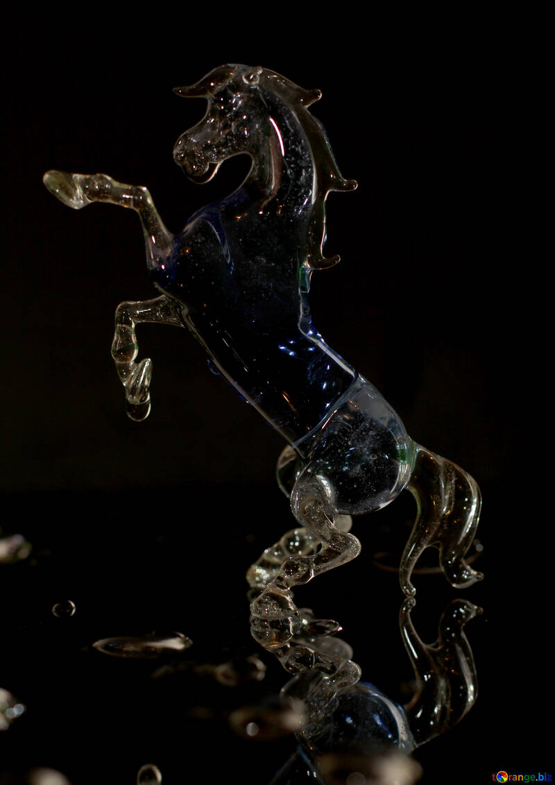 Horse of the glass on black background №24529