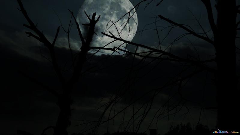 Paisaje sombrío en Halloween №24227