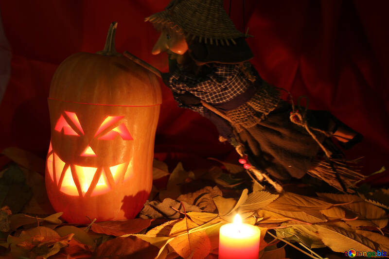 Picture of witch on Halloween pumpkin №24332