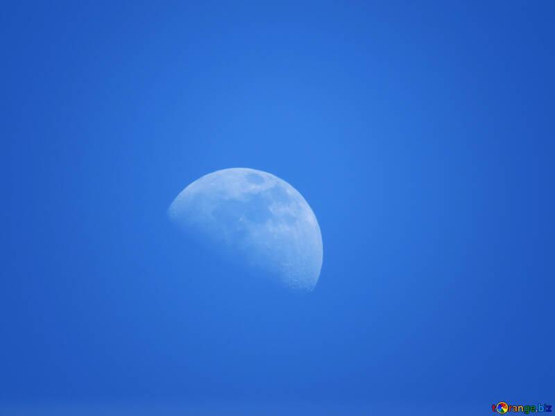 Голубая луна №24536