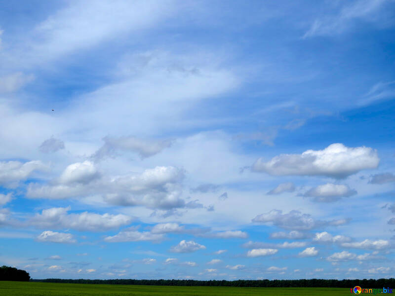 Sky over the field №24214