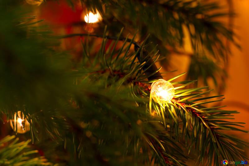 Guirlande sur l`arbre de Noël №24561