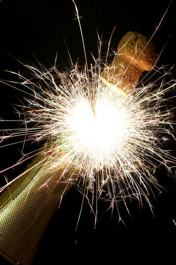 Explosion in bottle of champagne №25610