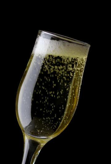 Celebratory drink №25739