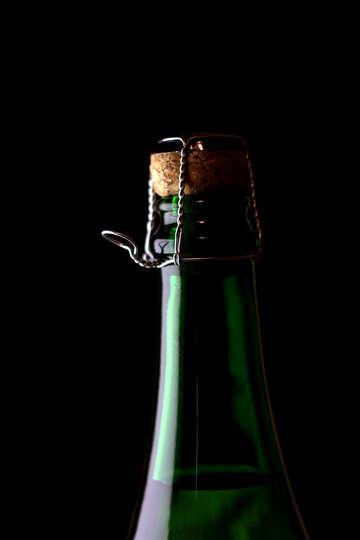 Exclusive wine №25783