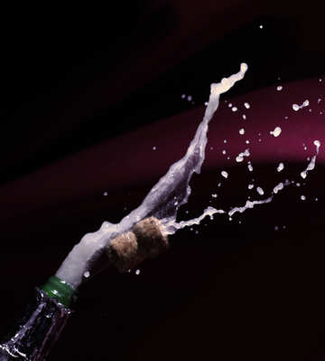 Salute champagne №25880