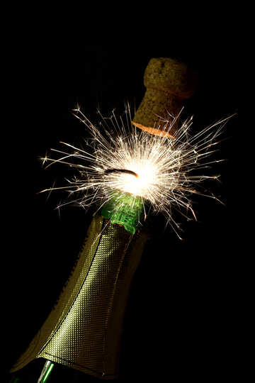 Sparkling fire with champagne №25601
