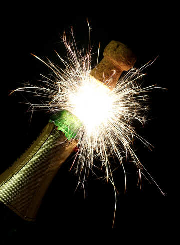Champagne with sparks №25603