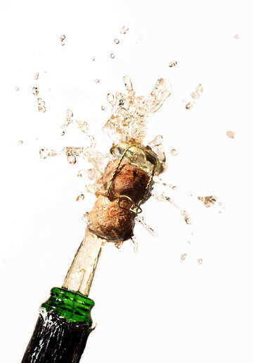 Champagne on white background №25094