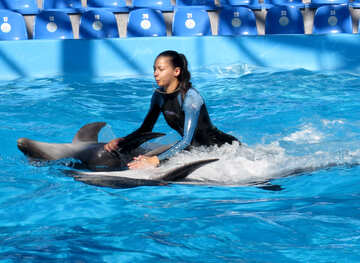 Voyage on the dolphins №25198